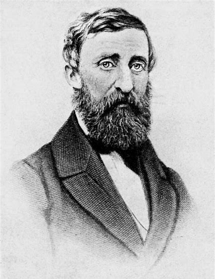 Photorealistic portrait drawing of Henry David Thoreau in full beard mode